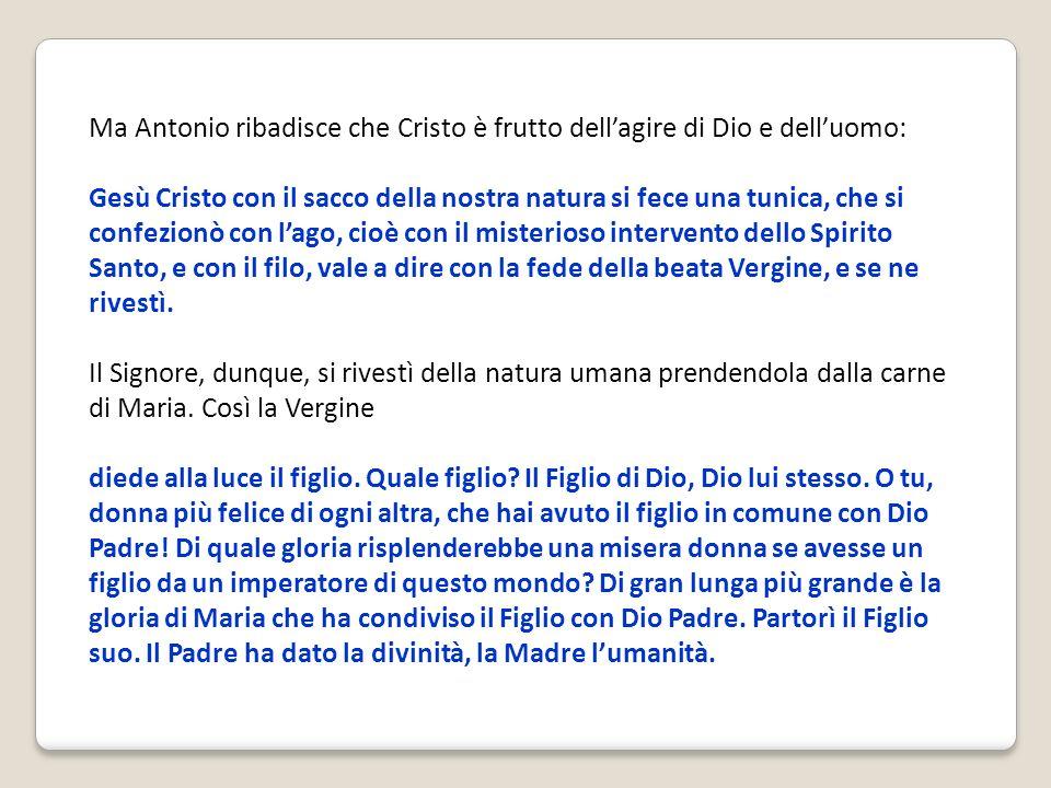 Ma Antonio ribadisce che Cristo è frutto dell'agire di Dio e dell'uomo: