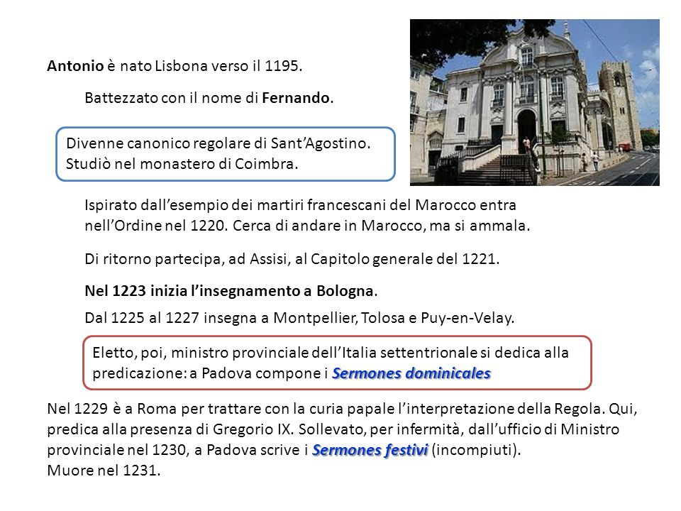 Antonio è nato Lisbona verso il 1195.