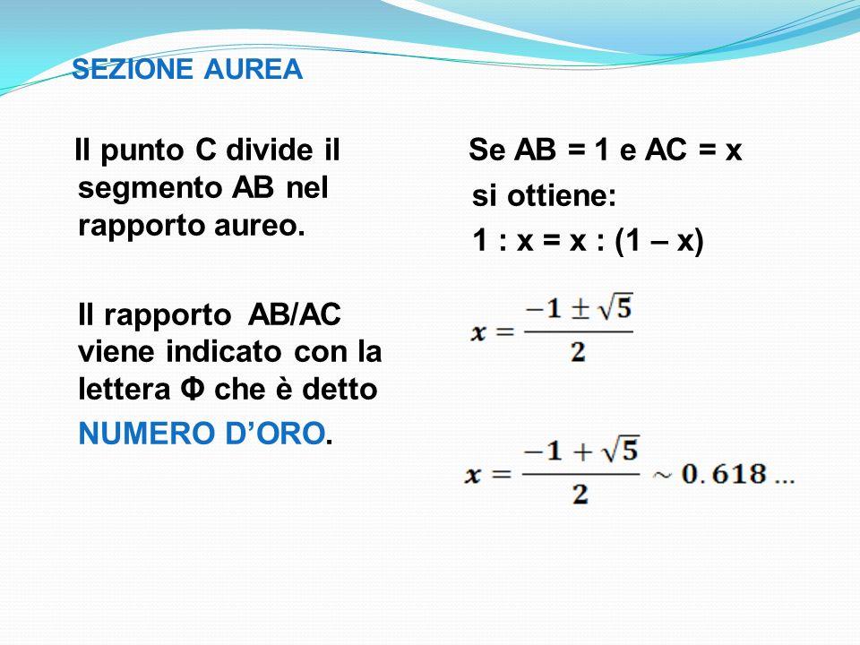 Il punto C divide il segmento AB nel rapporto aureo.