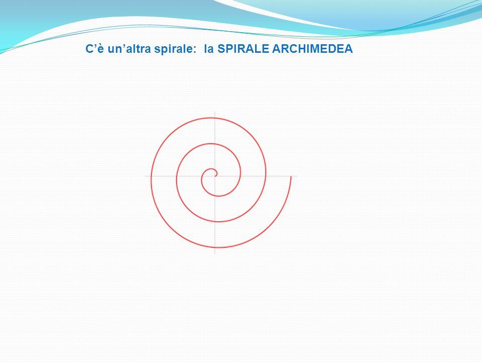 C'è un'altra spirale: la SPIRALE ARCHIMEDEA