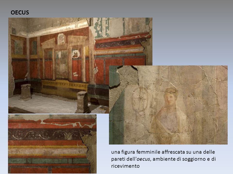 OECUS una figura femminile affrescata su una delle pareti dell oecus, ambiente di soggiorno e di ricevimento.