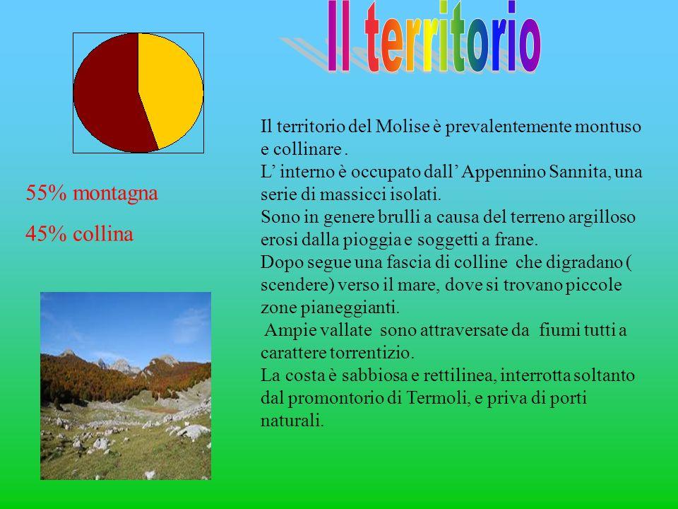 Il territorio 55% montagna 45% collina