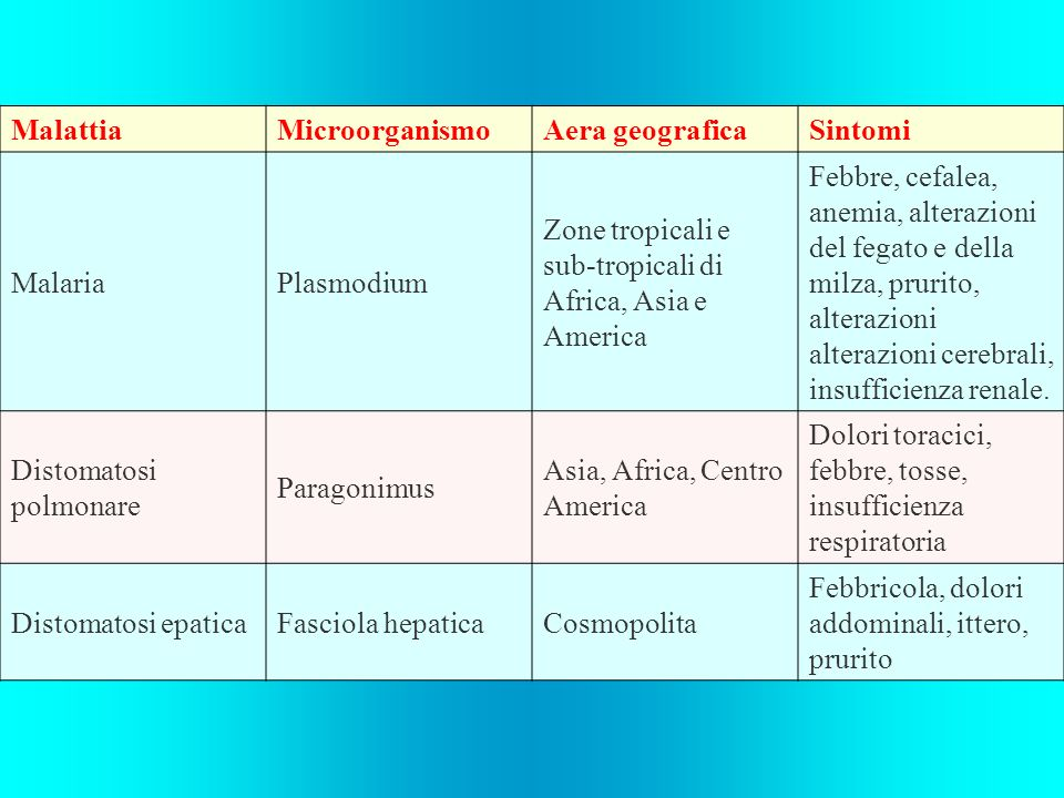 Malattia Microorganismo. Aera geografica. Sintomi. Malaria. Plasmodium. Zone tropicali e sub-tropicali di Africa, Asia e America.