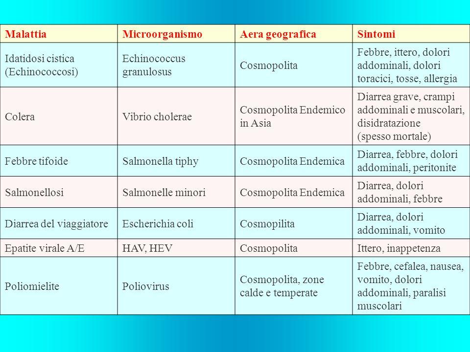 Malattia Microorganismo. Aera geografica. Sintomi. Idatidosi cistica (Echinococcosi) Echinococcus granulosus.