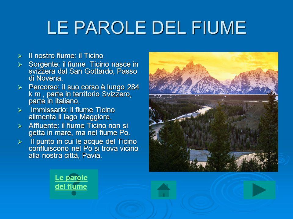 LE PAROLE DEL FIUME Il nostro fiume: il Ticino
