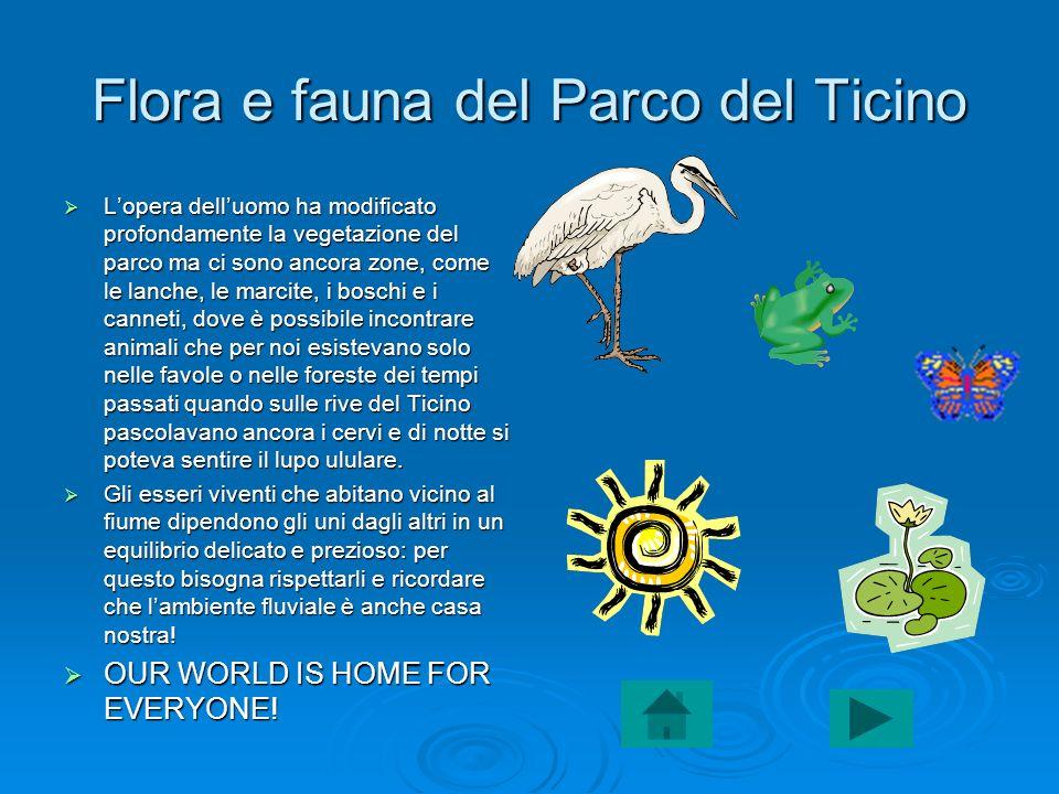 Flora e fauna del Parco del Ticino