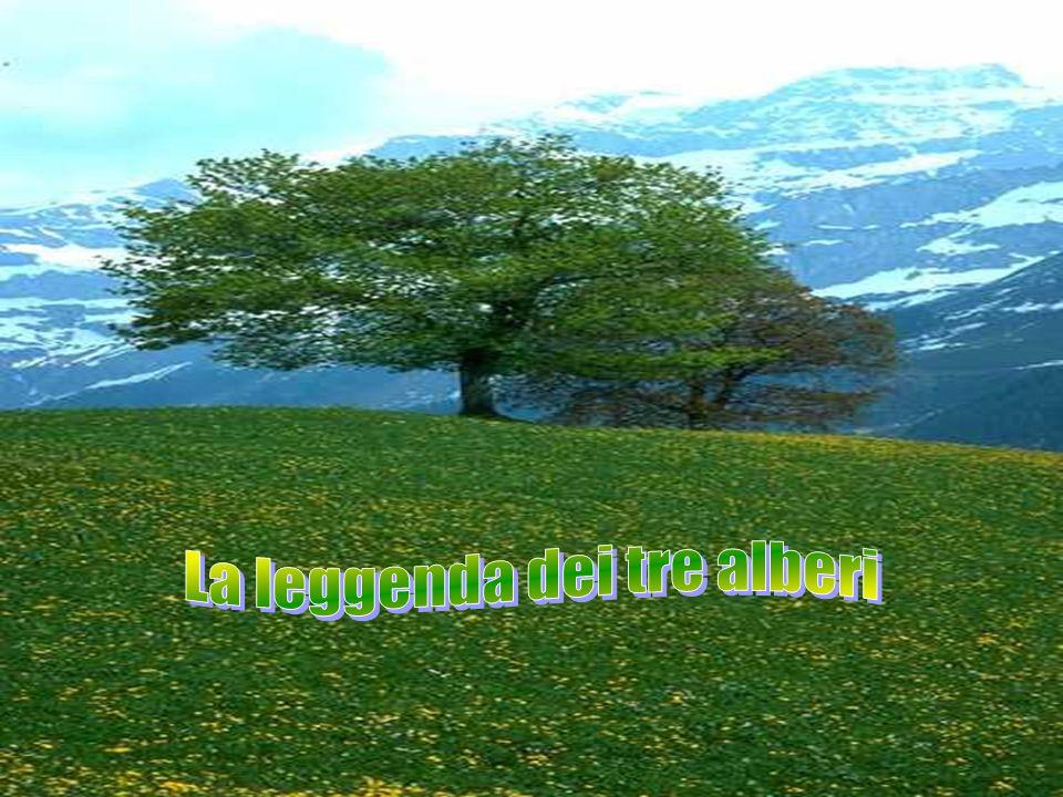 La leggenda dei tre alberi