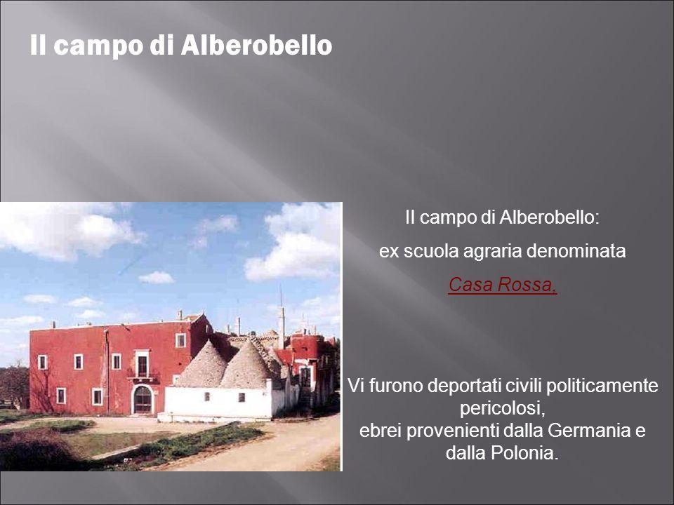 Il campo di Alberobello