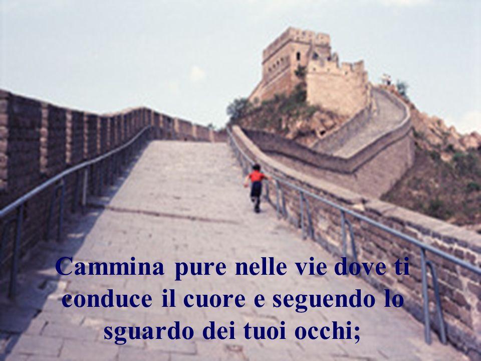 Cammina pure nelle vie dove ti conduce il cuore e seguendo lo sguardo dei tuoi occhi;