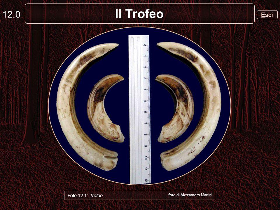 12.0 Il Trofeo Esci Foto 12.1: Trofeo foto di Alessandro Martini