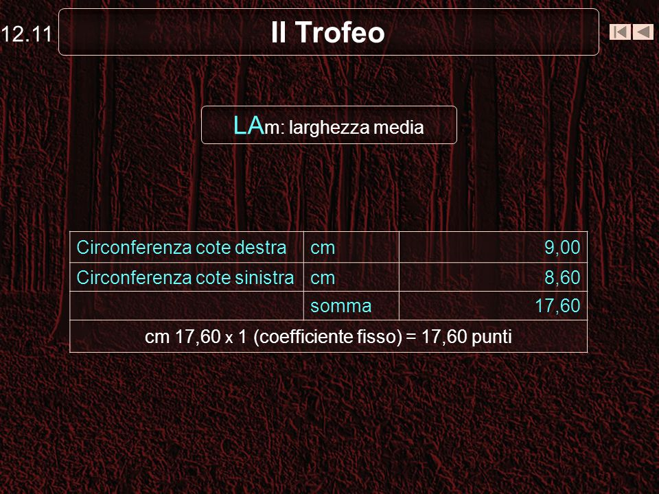 cm 17,60 x 1 (coefficiente fisso) = 17,60 punti