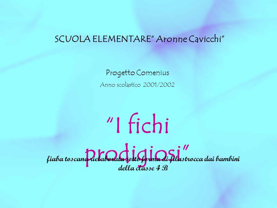 SCUOLA ELEMENTARE Aronne Cavicchi