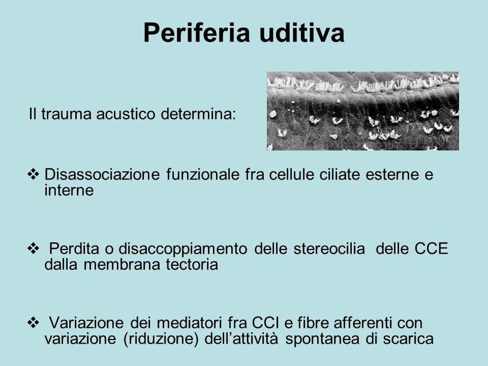 Periferia uditiva Il trauma acustico determina: Disassociazione funzionale fra cellule ciliate esterne e interne.