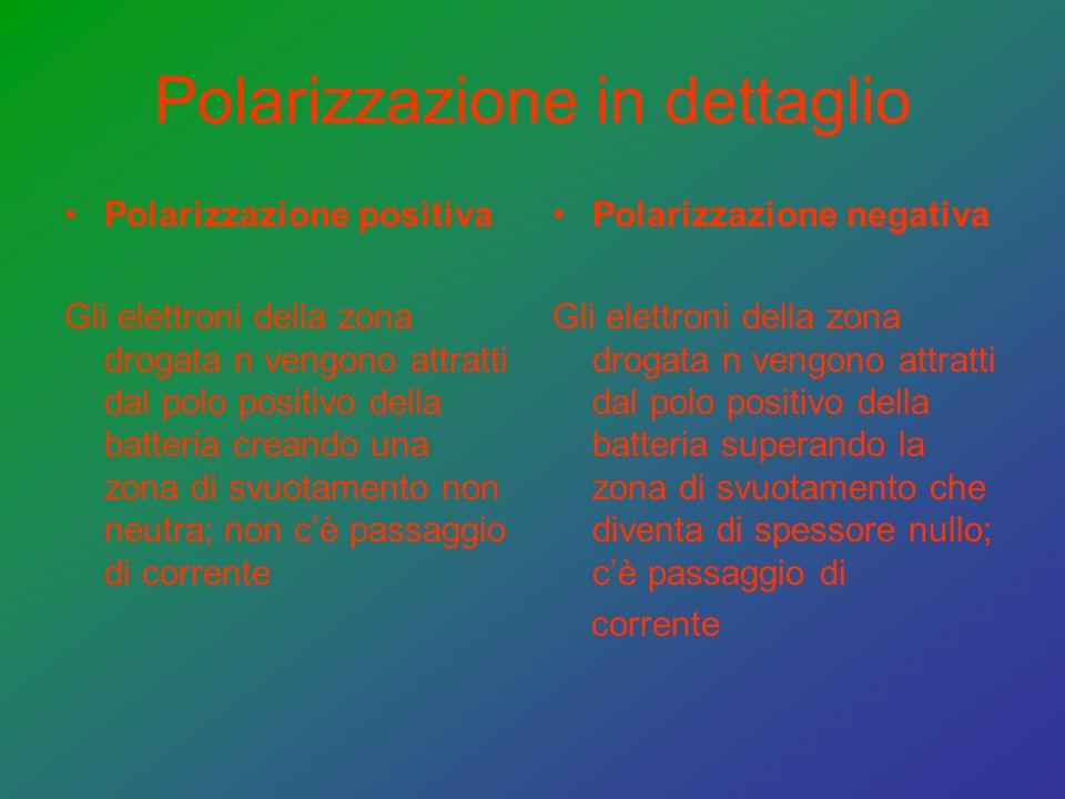 Polarizzazione in dettaglio