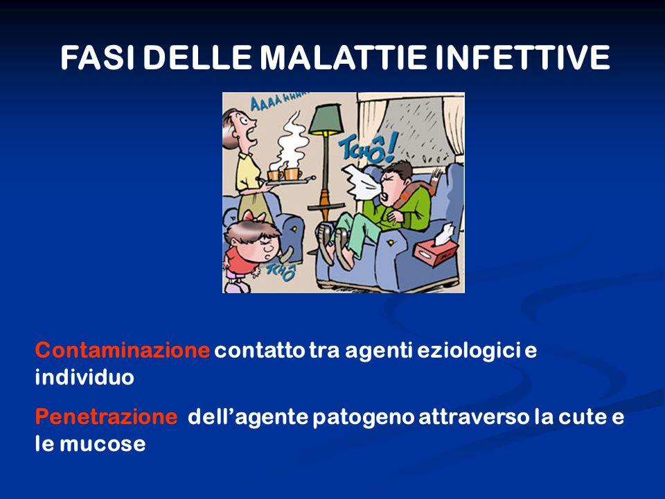 FASI DELLE MALATTIE INFETTIVE