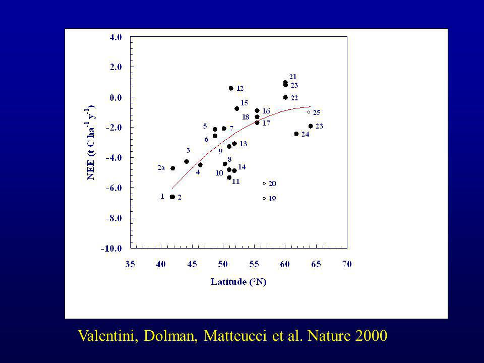 Valentini, Dolman, Matteucci et al. Nature 2000