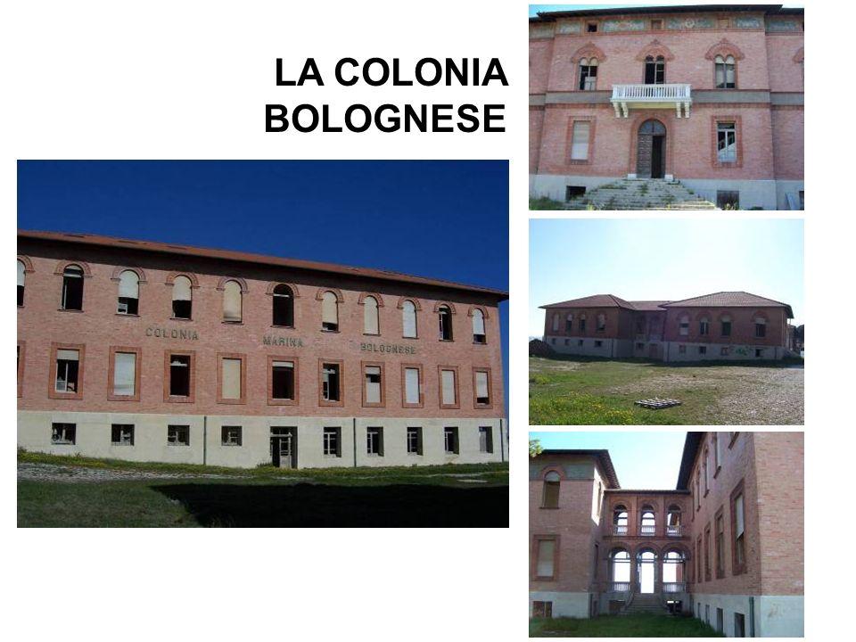 LA COLONIA BOLOGNESE