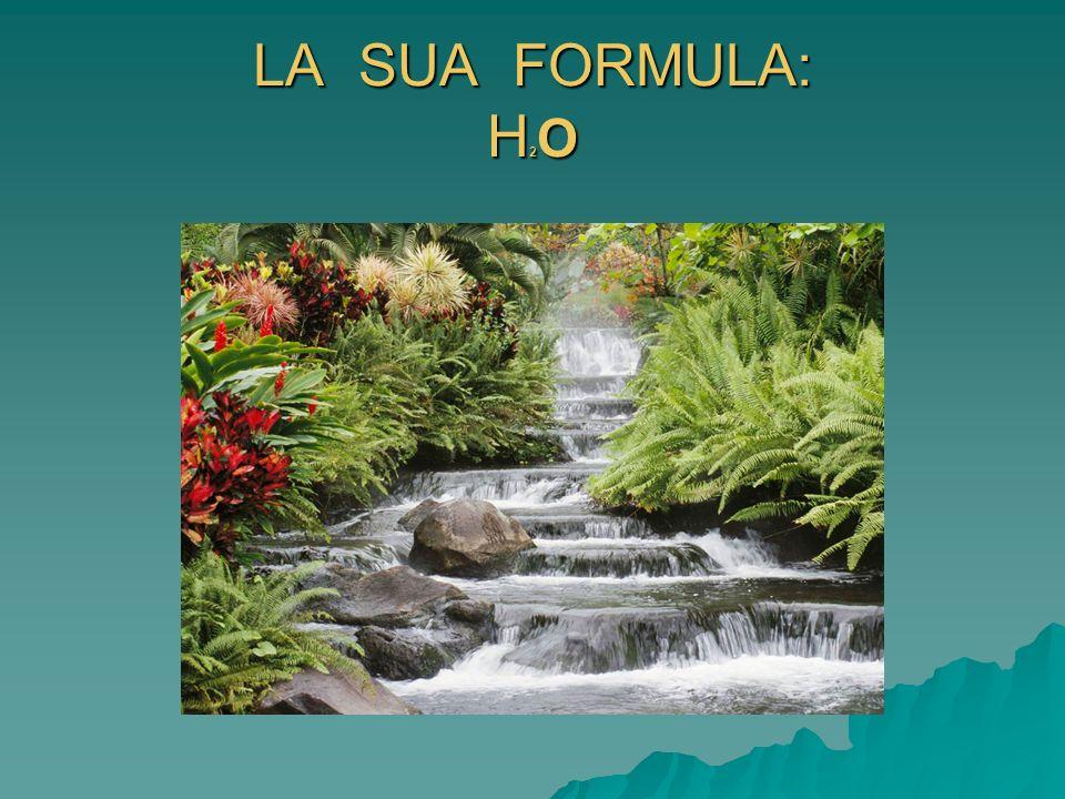 LA SUA FORMULA: H2O