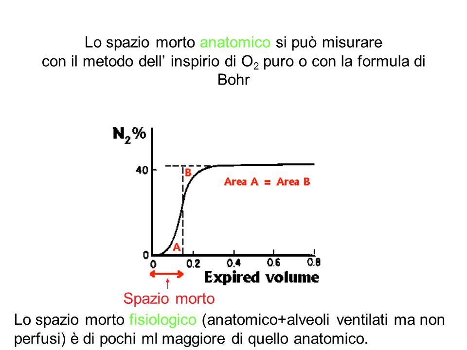 Lo spazio morto anatomico si può misurare con il metodo dell' inspirio di O2 puro o con la formula di Bohr