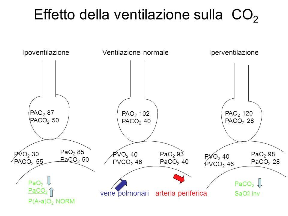Effetto della ventilazione sulla CO2