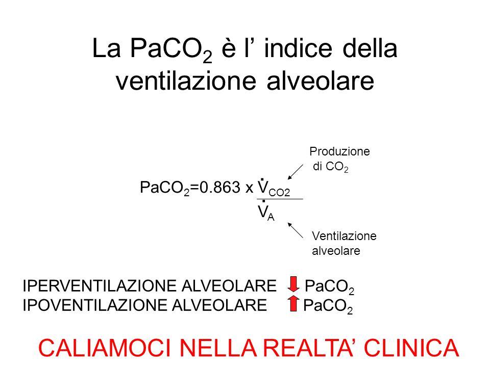 La PaCO2 è l' indice della ventilazione alveolare