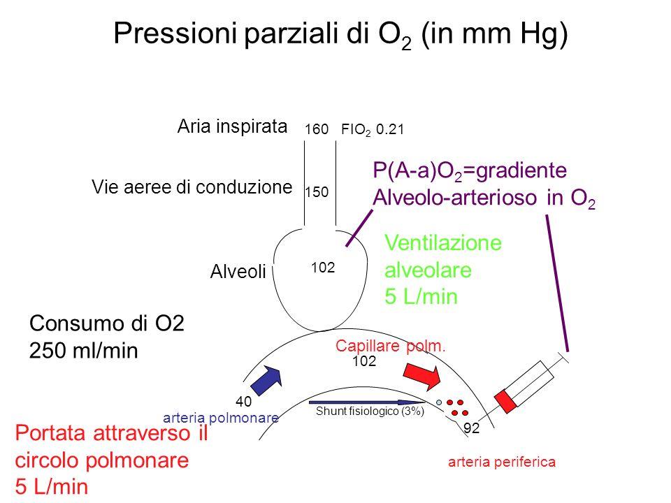 Pressioni parziali di O2 (in mm Hg)