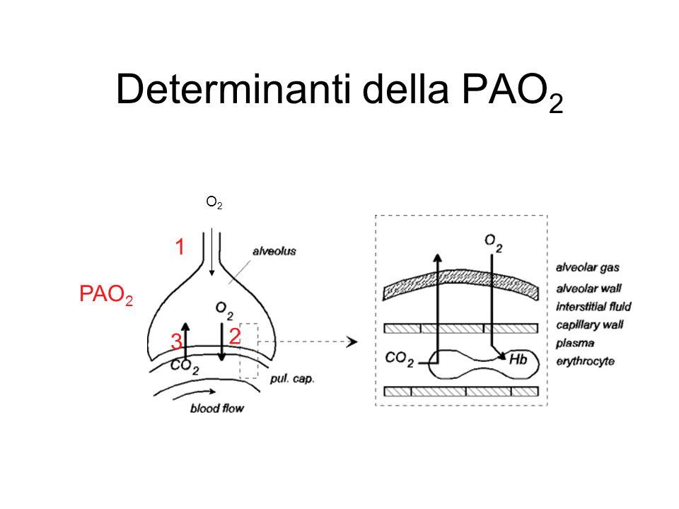 Determinanti della PAO2