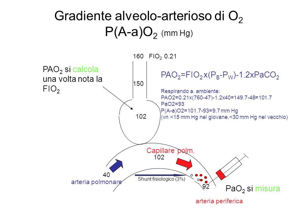 Gradiente alveolo-arterioso di O2 P(A-a)O2 (mm Hg)