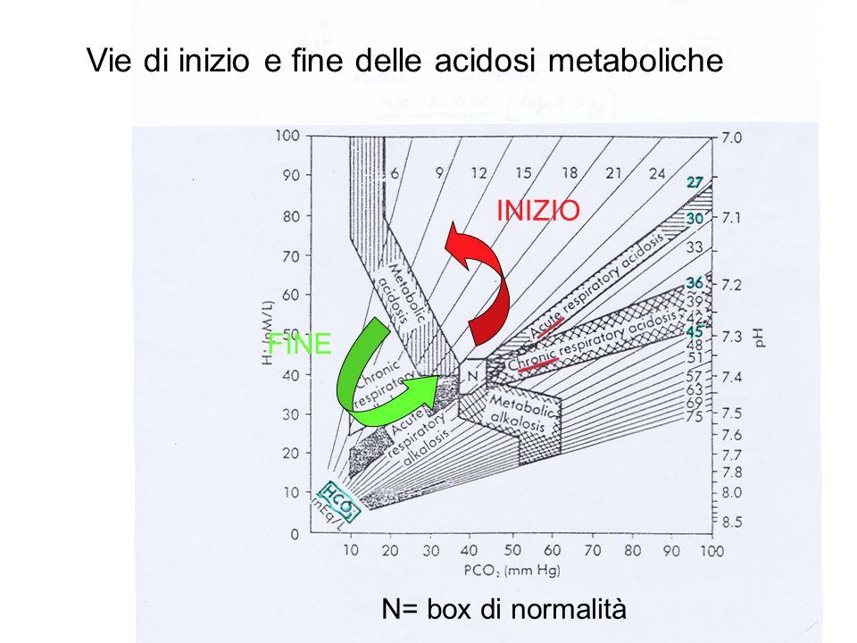Vie di inizio e fine delle acidosi metaboliche