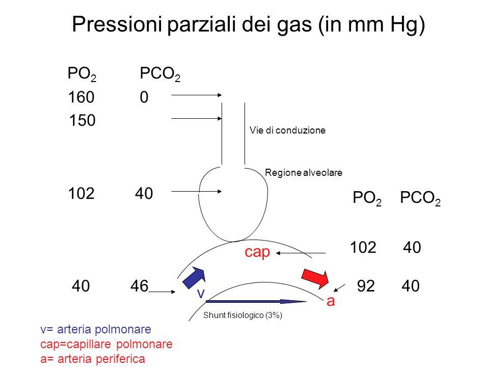 Pressioni parziali dei gas (in mm Hg)