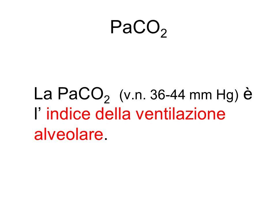PaCO2 La PaCO2 (v.n. 36-44 mm Hg) è l' indice della ventilazione alveolare.