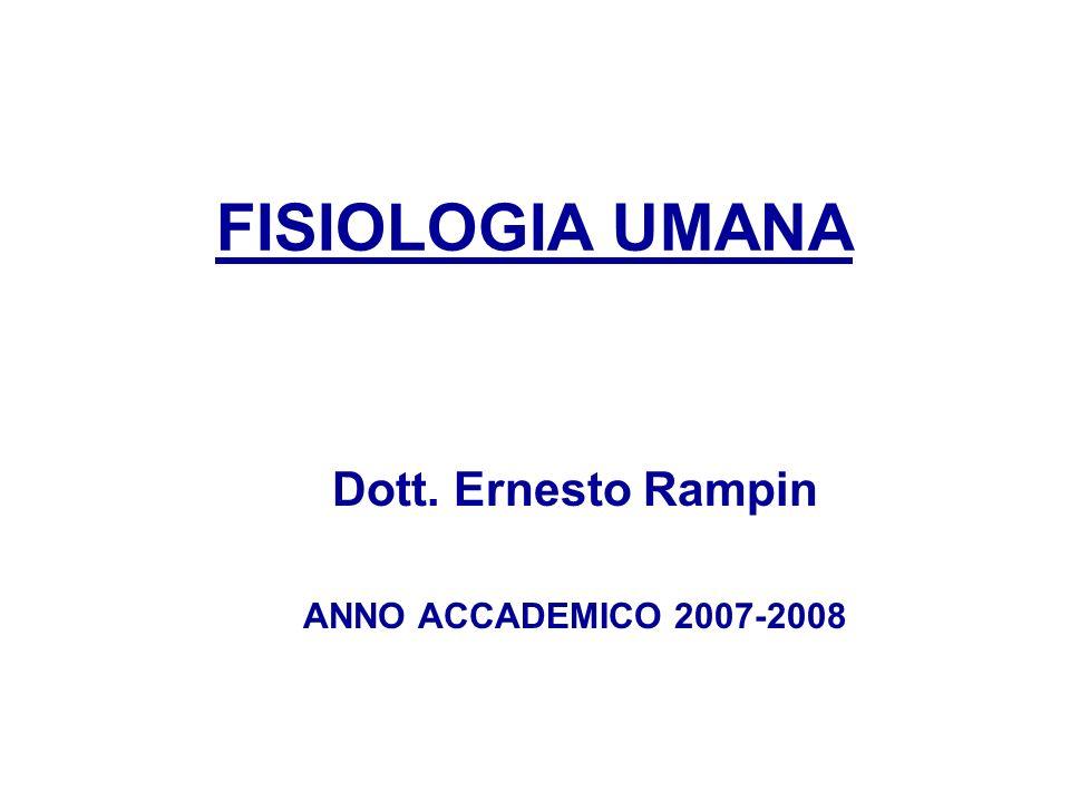 Dott. Ernesto Rampin ANNO ACCADEMICO 2007-2008