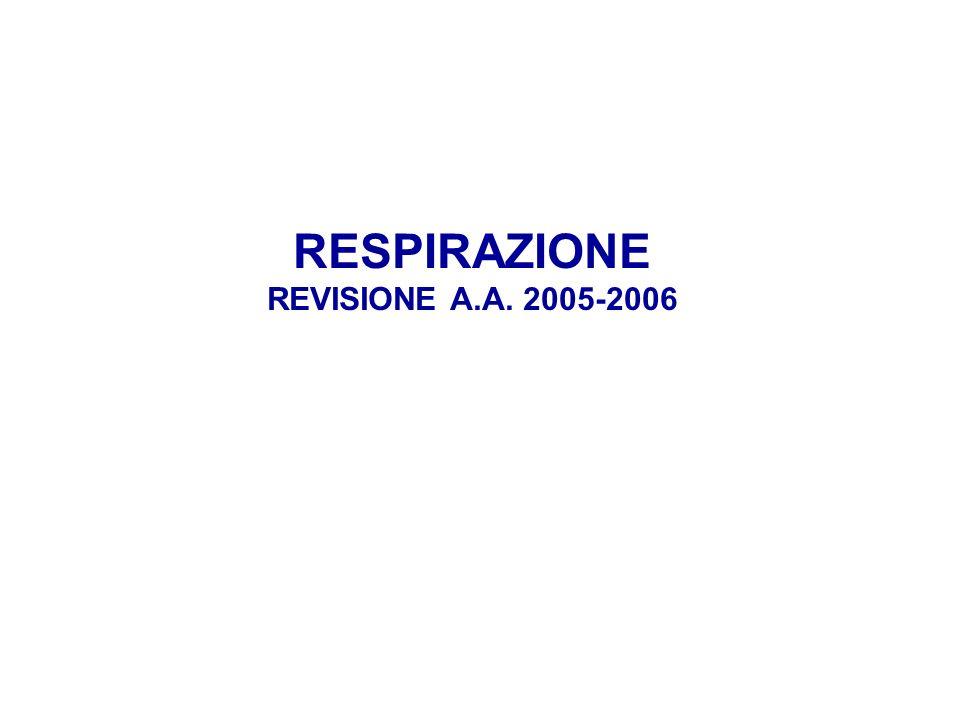 RESPIRAZIONE REVISIONE A.A. 2005-2006