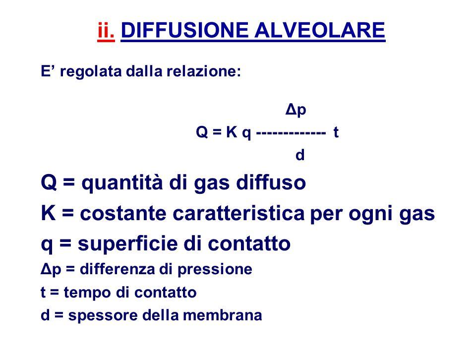 ii. DIFFUSIONE ALVEOLARE