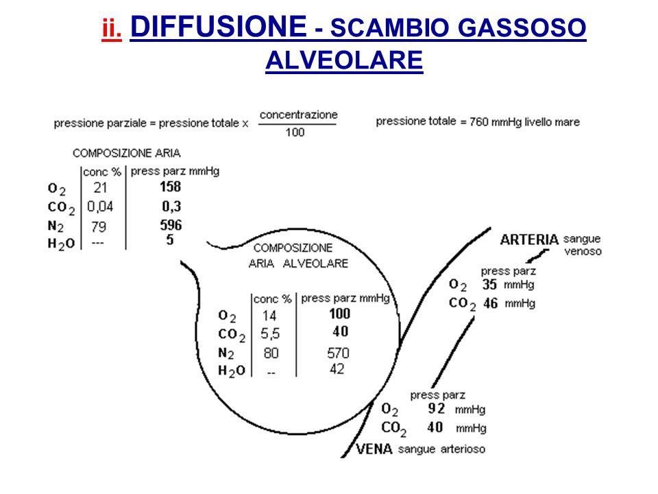 ii. DIFFUSIONE - SCAMBIO GASSOSO ALVEOLARE