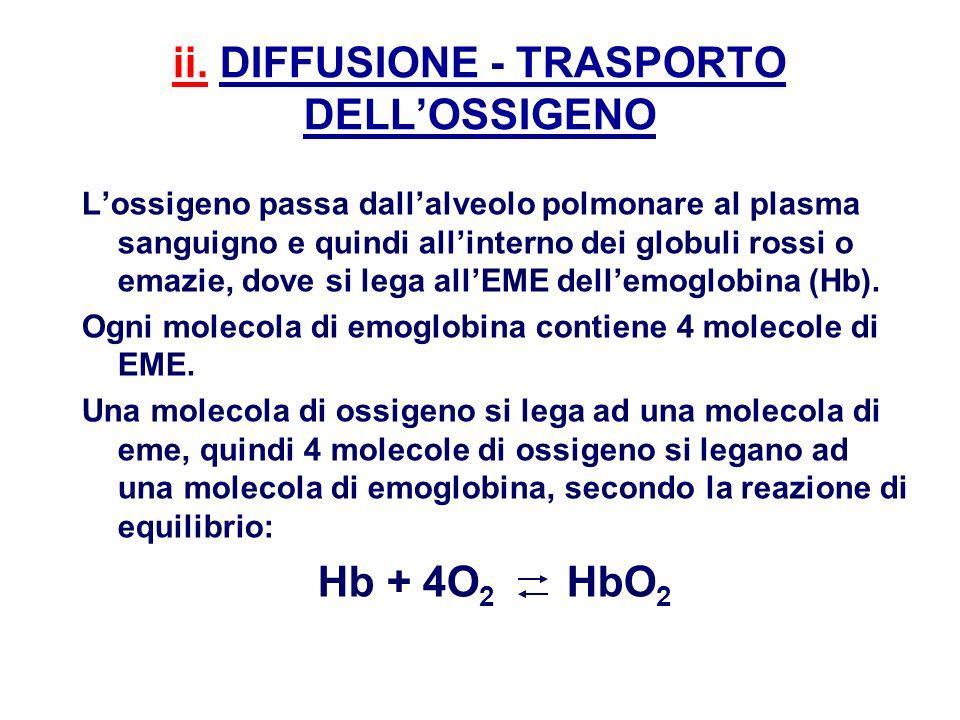 ii. DIFFUSIONE - TRASPORTO DELL'OSSIGENO