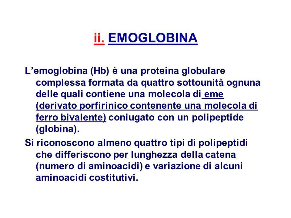 ii. EMOGLOBINA