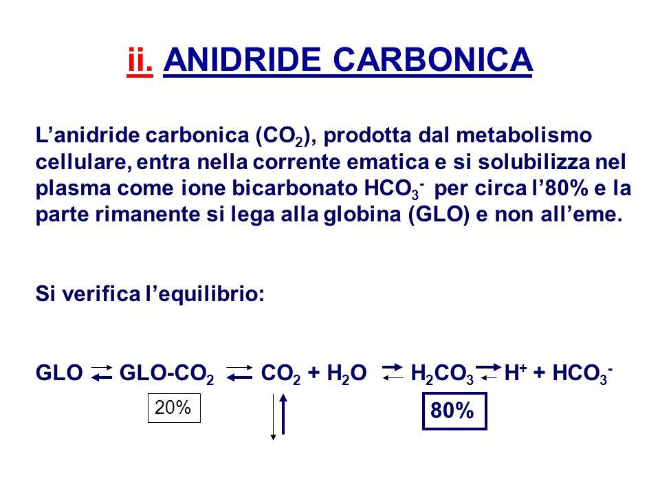 ii. ANIDRIDE CARBONICA