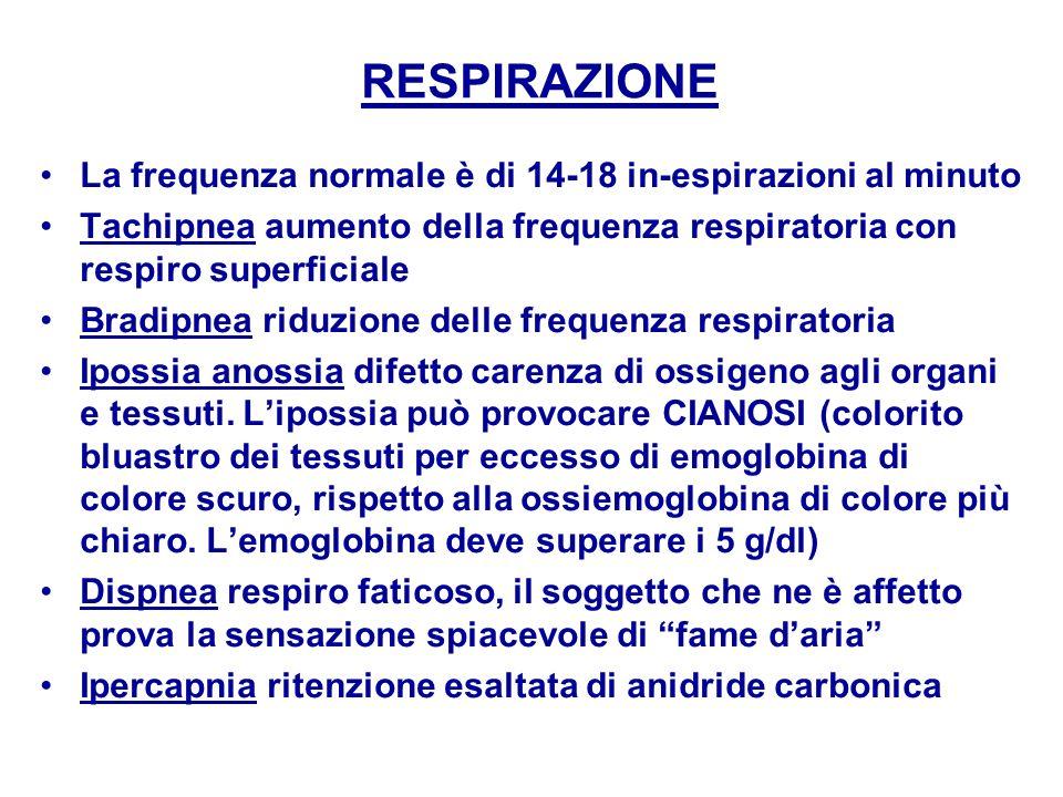 RESPIRAZIONE La frequenza normale è di 14-18 in-espirazioni al minuto