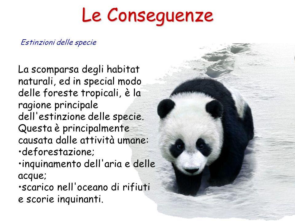 Le Conseguenze Estinzioni delle specie.