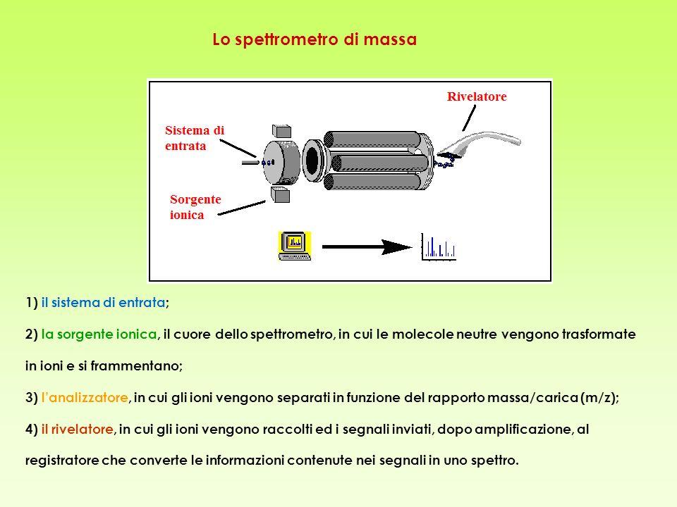 Lo spettrometro di massa