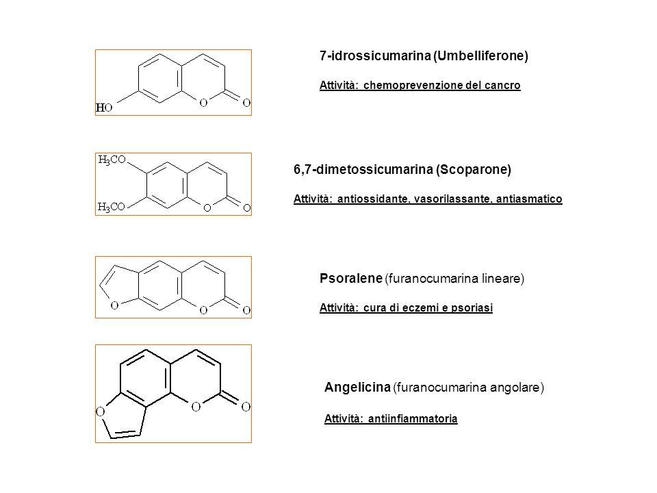 7-idrossicumarina (Umbelliferone)