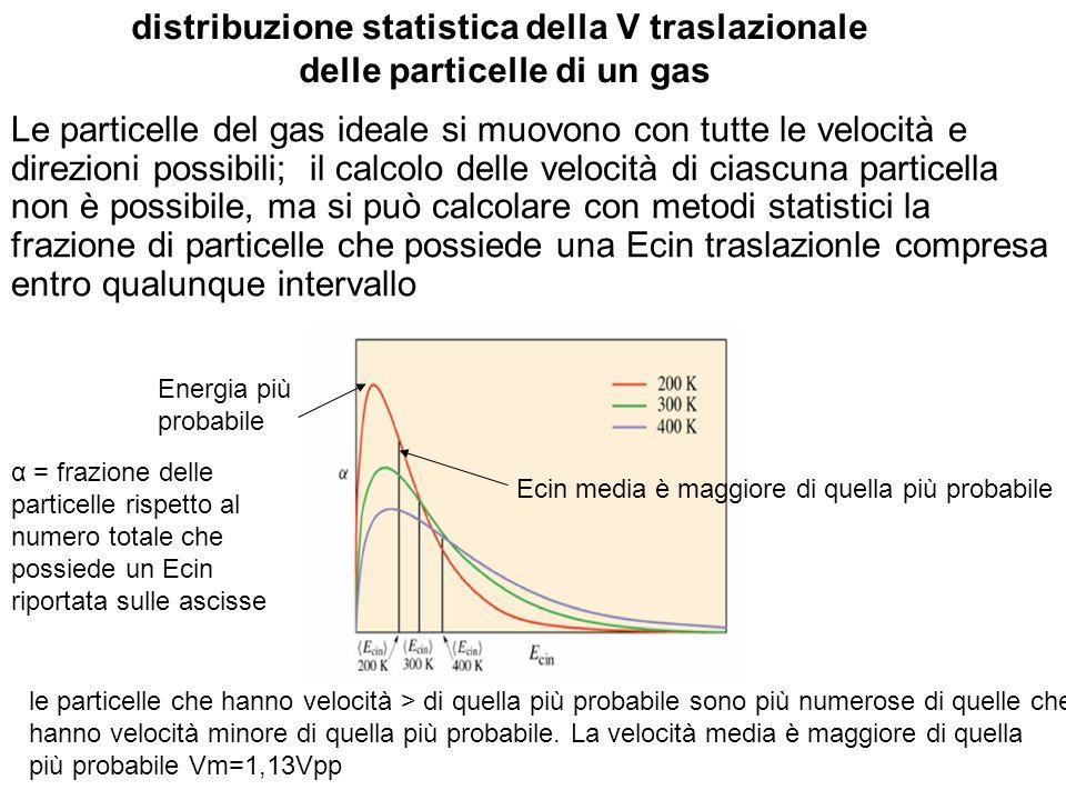 distribuzione statistica della V traslazionale