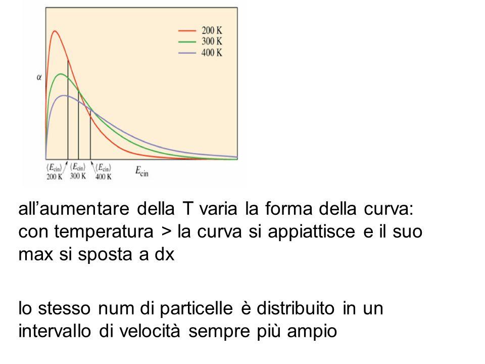 all'aumentare della T varia la forma della curva: con temperatura > la curva si appiattisce e il suo max si sposta a dx