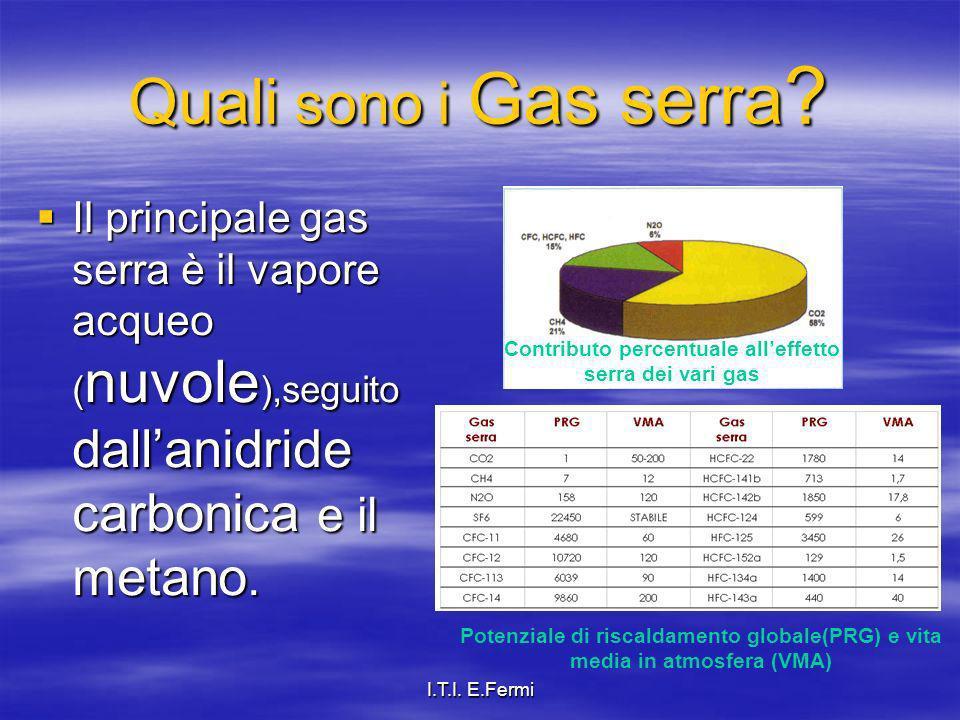 Contributo percentuale all'effetto serra dei vari gas