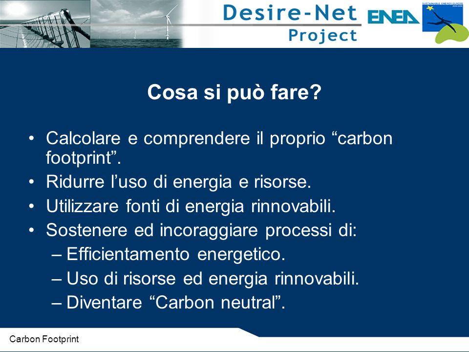 Cosa si può fare Calcolare e comprendere il proprio carbon footprint . Ridurre l'uso di energia e risorse.