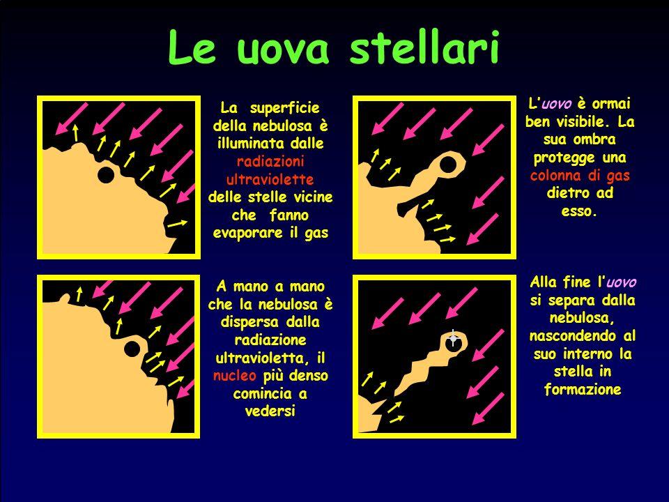 Le uova stellari La superficie della nebulosa è illuminata dalle radiazioni ultraviolette delle stelle vicine che fanno evaporare il gas.