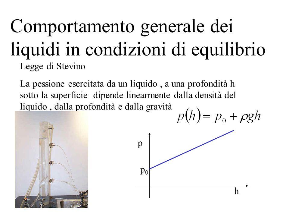 Comportamento generale dei liquidi in condizioni di equilibrio