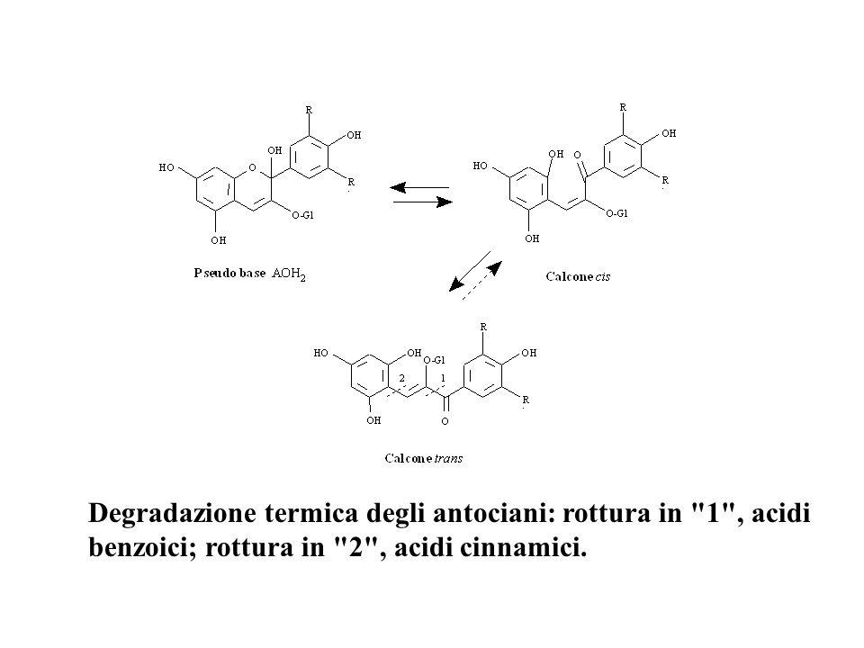 Degradazione termica degli antociani: rottura in 1 , acidi benzoici; rottura in 2 , acidi cinnamici.