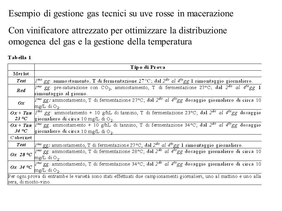 Esempio di gestione gas tecnici su uve rosse in macerazione